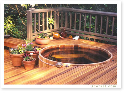Gas-Electric Hot Tub