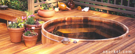 Gas - Electric Hot Tub